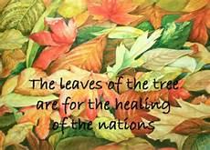 Rev 22 leaves of tree