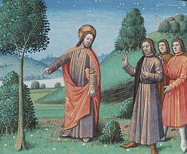 Luke13-6 fig tree, medieval