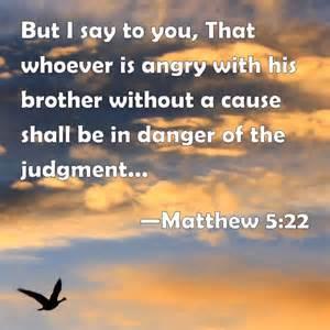 Matt 5-22 angry, bird