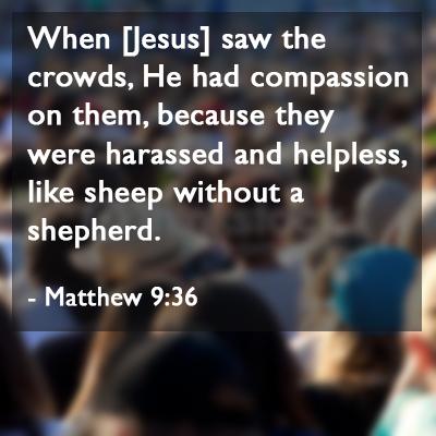 Matt 9-36 sheep, shepherd people