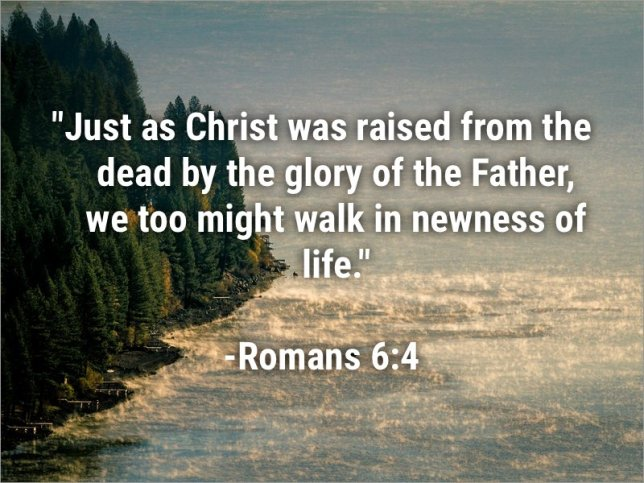 Rom 6-4 nwness of life
